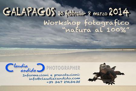 2014-Galapagos-web